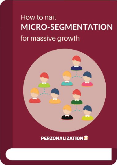 Customer Micro-segmentation strategies are often seen to garner some serious increase in sales and revenue for your eCommerce business.